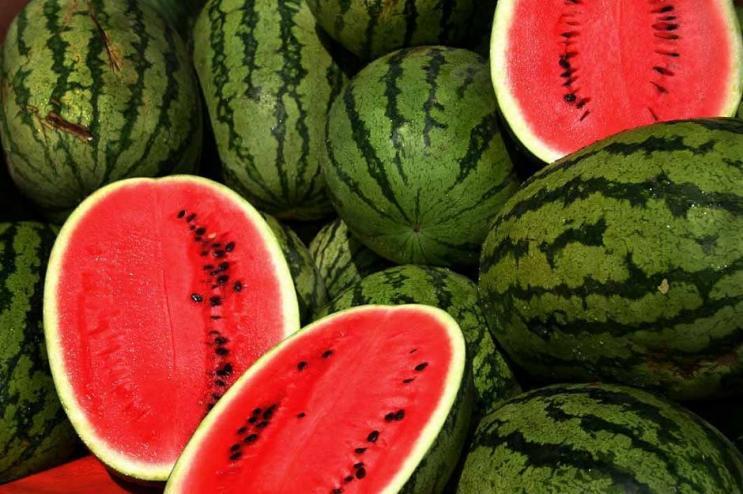 Veliko Tarnovo Watermelon Festival