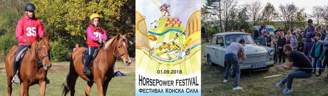 Horse power festival near Veliko Tarnovo